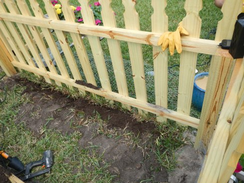 Home Depot garden fence for raised bed garden